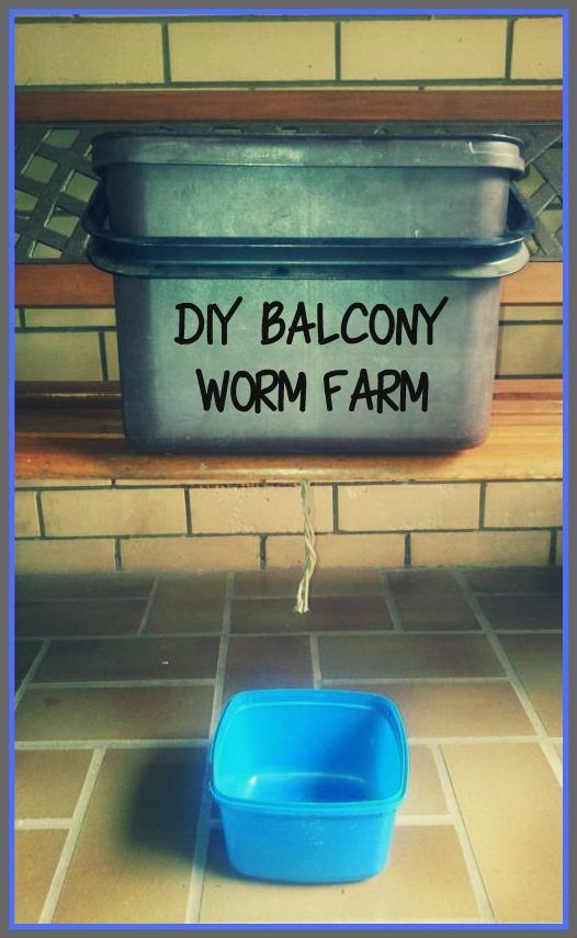 How to make your own Worm Farm (Hint: It's cheap, portable and balcony friendly!) - The Urban Ecolife