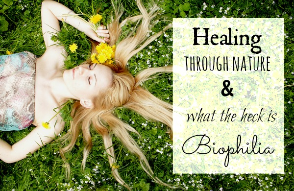 Healing through nature and what the heck is Biophilia