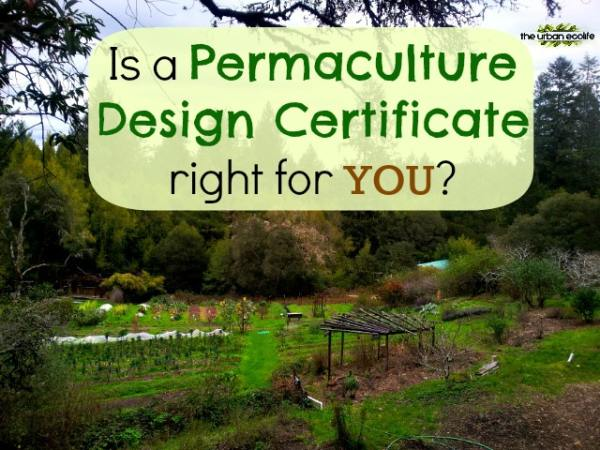 Is a Permaculture Design Certificate right for you? My Experience at OAEC - The Urban Ecolife