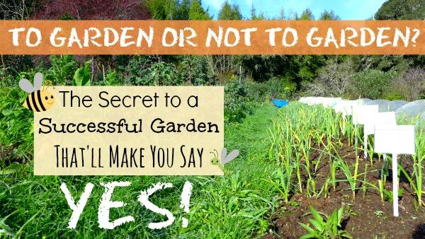To Garden or Not to Garden? The Secret to a Successful Garden That'll Make You Say Yes! - The Urban Ecolife