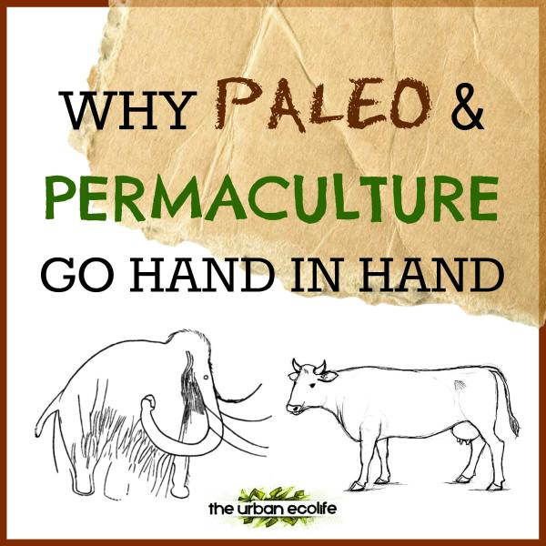 Why Paleo and Permaculture Go Hand in Hand - The Urban Ecolife